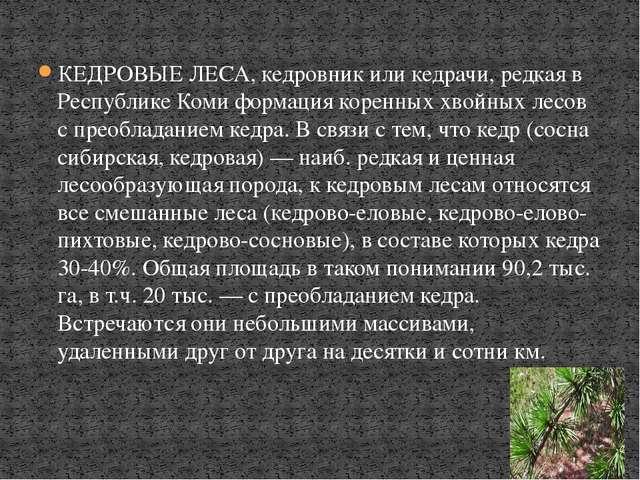 КЕДРОВЫЕ ЛЕСА, кедровник или кедрачи, редкая в Республике Коми формация корен...