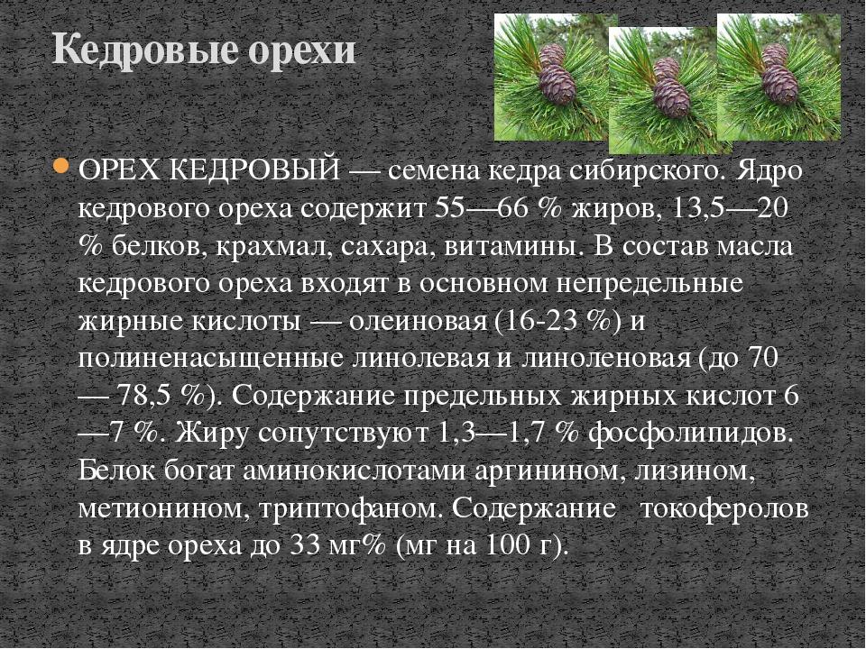 ОРЕХ КЕДРОВЫЙ — семена кедра сибирского. Ядро кедрового ореха содержит 55—66...