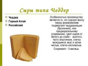 Сыры типа Чеддер Чеддер Горный Алтай Российский Особенностью производства явл