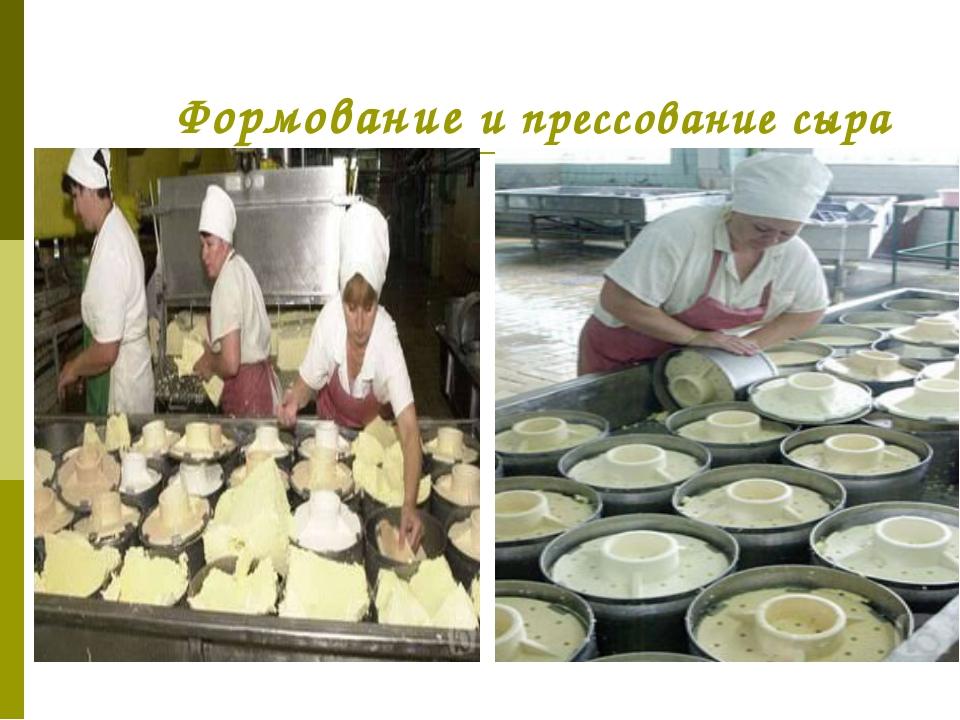 Формование и прессование сыра