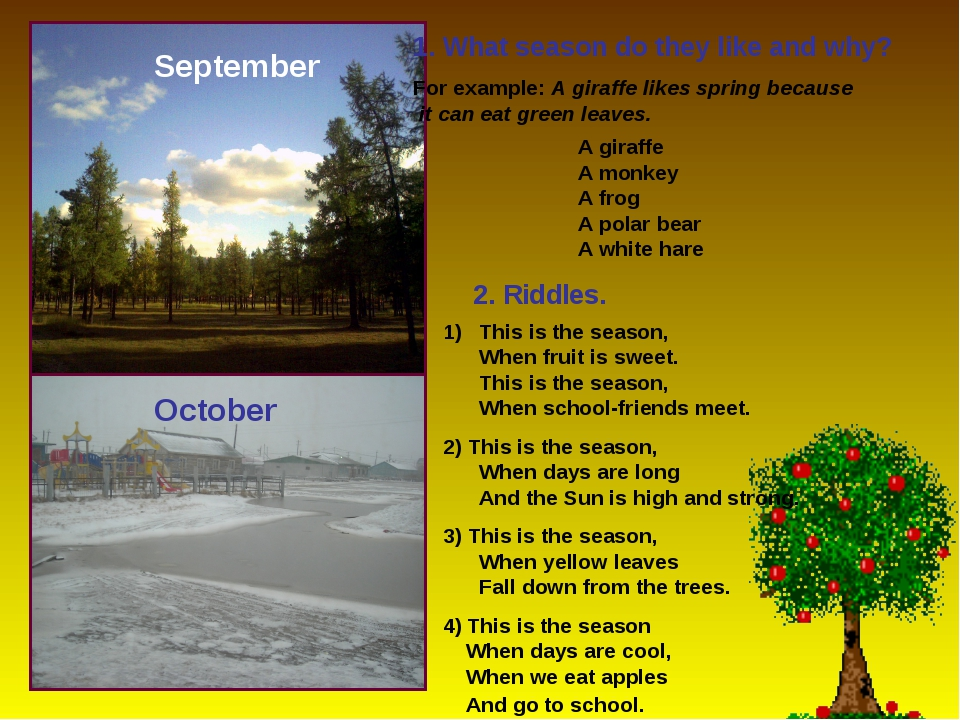 September October 1. What season do they like and why? For example: A giraffe...