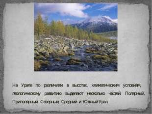 На Урале по различиям в высотах, климатическим условиям, геологическому разви