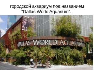 """городской аквариум под названием """"Dallas World Aquarium""""."""