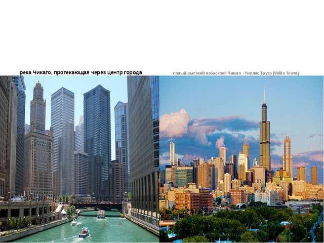 река Чикаго, протекающая через центр города самый высокий небоскреб Чикаго -...