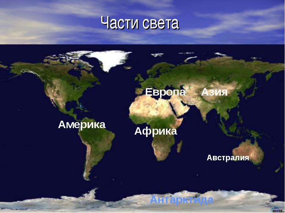 Части света Европа Азия Африка Австралия Америка Антарктида