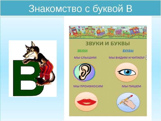 konspekt-zanyatiya-znakomstvo-s-bukvoy-b