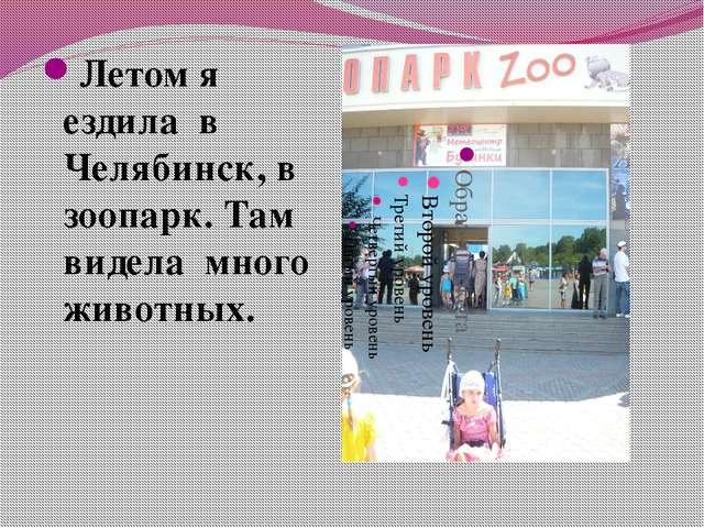 Летом я ездила в Челябинск, в зоопарк. Там видела много животных.