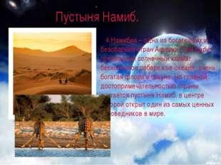 Пустыня Намиб. 4.Намибия – одна из богатейших и безопасных стран Африки. Там