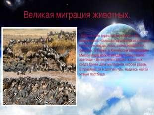 Великая миграция животных. . Еще на этих территориях обитает так называемая «