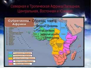 Северная и Тропическая Африка(Западная, Центральная, Восточная и Южная).