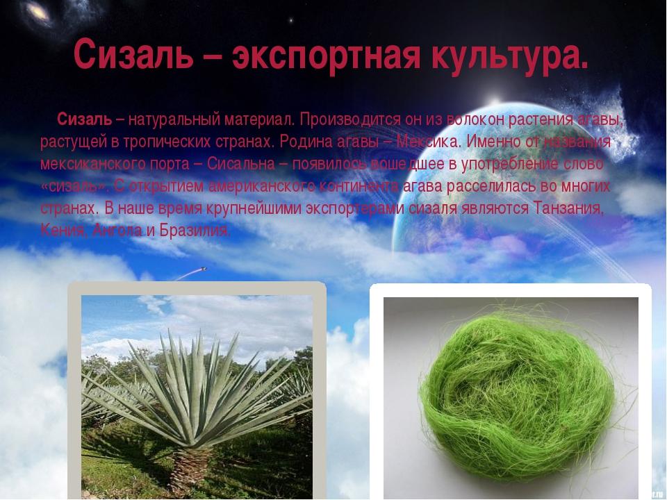 Сизаль – экспортная культура. Сизаль– натуральный материал. Производится он...