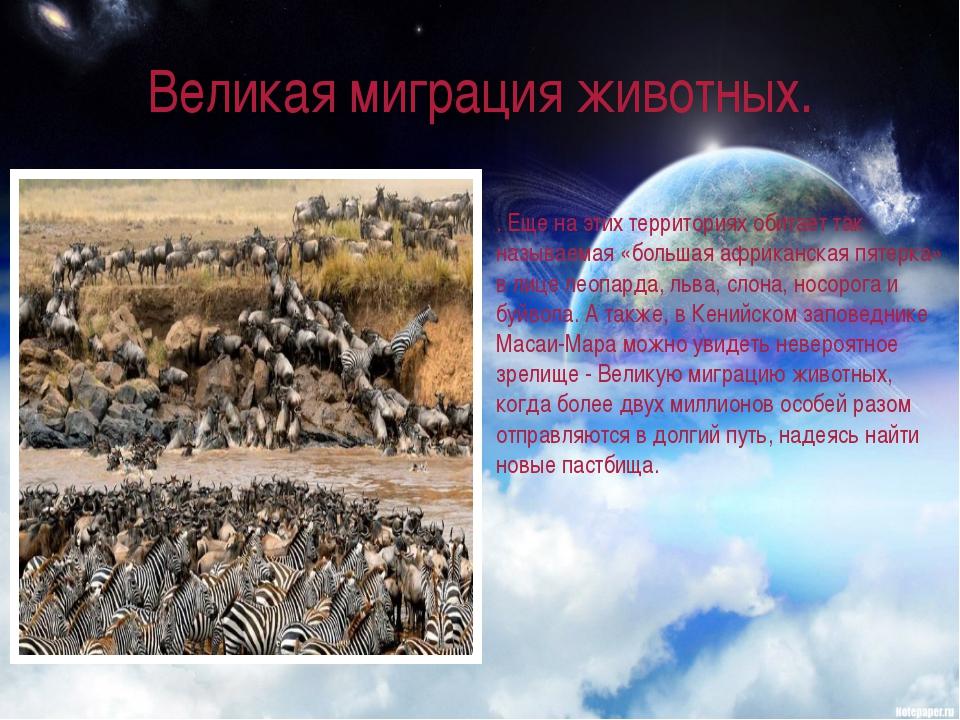 Великая миграция животных. . Еще на этих территориях обитает так называемая «...