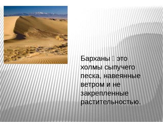 Барханы — это холмы сыпучего песка, навеянные ветром и не закрепленные растит...