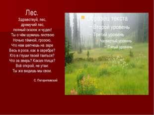 Лес. Здравствуй, лес, дремучий лес, полный сказок и чудес! Ты о чём шумишь ли