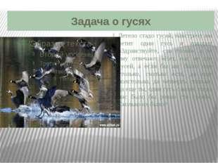 Задача о гусях Летело стадо гусей, навстречу им летит один гусь и говорит «Зд