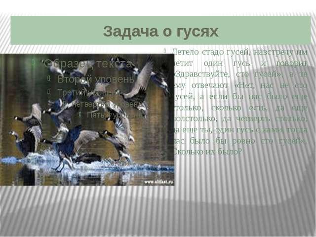 Задача о гусях Летело стадо гусей, навстречу им летит один гусь и говорит «Зд...