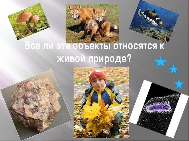 Все ли эти объекты относятся к живой природе?