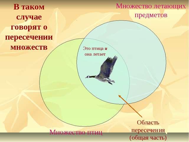 В таком случае говорят о пересечении множеств Множество птиц Множество летающ...