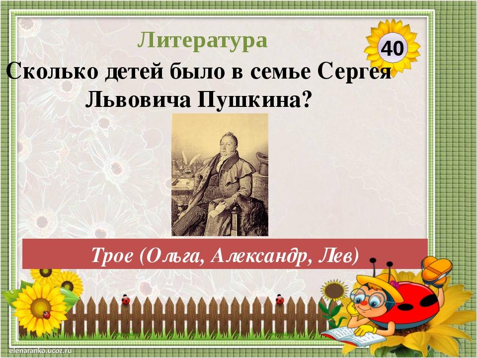 «Сказка о медведихе» Назовите незаконченную сказку А.С.Пушкина. 50 Литература