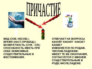 ВИД (СОВ. НЕСОВ.); ВРЕМЯ (НАСТ.ПРОШЕД.); ВОЗВРАТНОСТЬ (СУФ. –СЯ); СПОСОБНОСТЬ