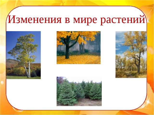 ии Изменения в мире растений