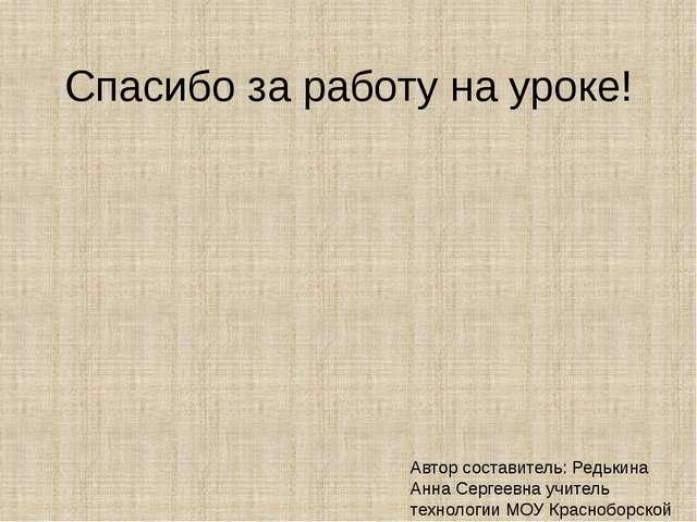 Спасибо за работу на уроке! Автор составитель: Редькина Анна Сергеевна учител...