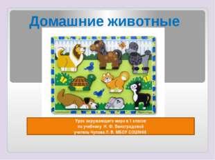 Урок окружающего мира в 1 классе по учебнику Н. Ф. Виноградовой учитель Чупо