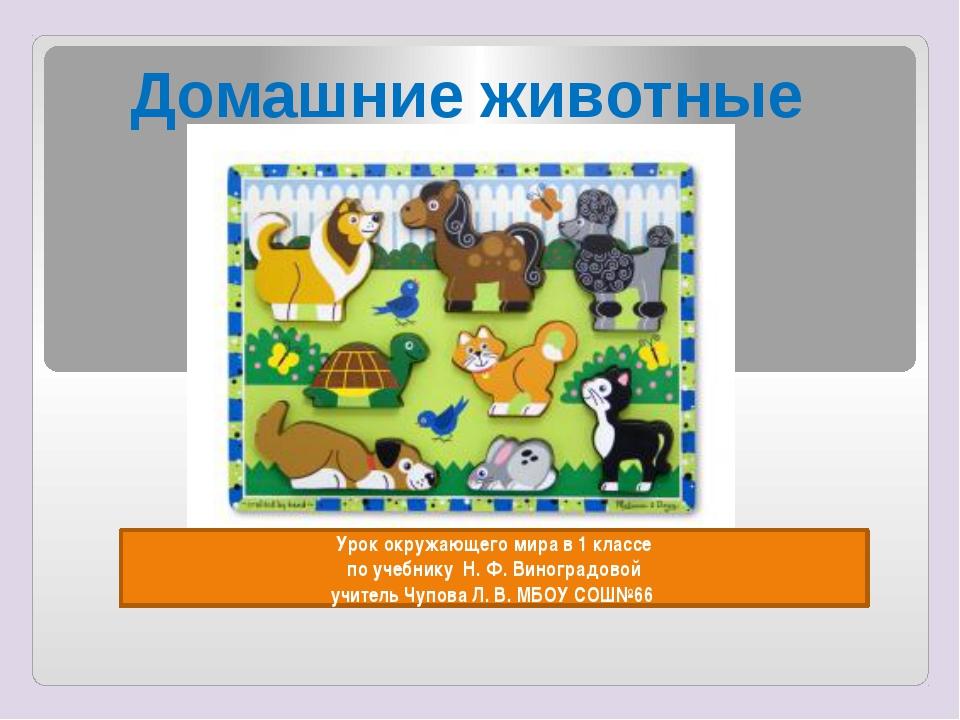 Урок окружающего мира в 1 классе по учебнику Н. Ф. Виноградовой учитель Чупо...