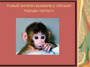 Новый антиген выявили у обезьян породы «резус»