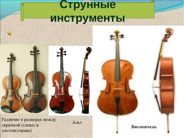Альт Различие в размерах между скрипкой (слева) и альтом(справа) Виолончель С...
