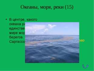 Горы (75) В честь какого капитана, воспетого В.Высоцким, названа высочайшая в