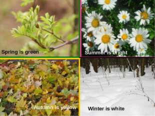 Spring is green Autumn is yellow Summer is bright Winter is white