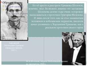 Но об аресте и расстреле Ермакова Шолохов, конечно, знал. Возможно, именно э