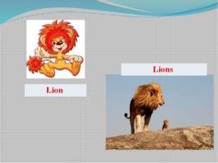 Lion Lions