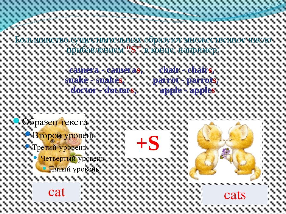 """Большинство существительных образуют множественное число прибавлением """"S"""" в к..."""