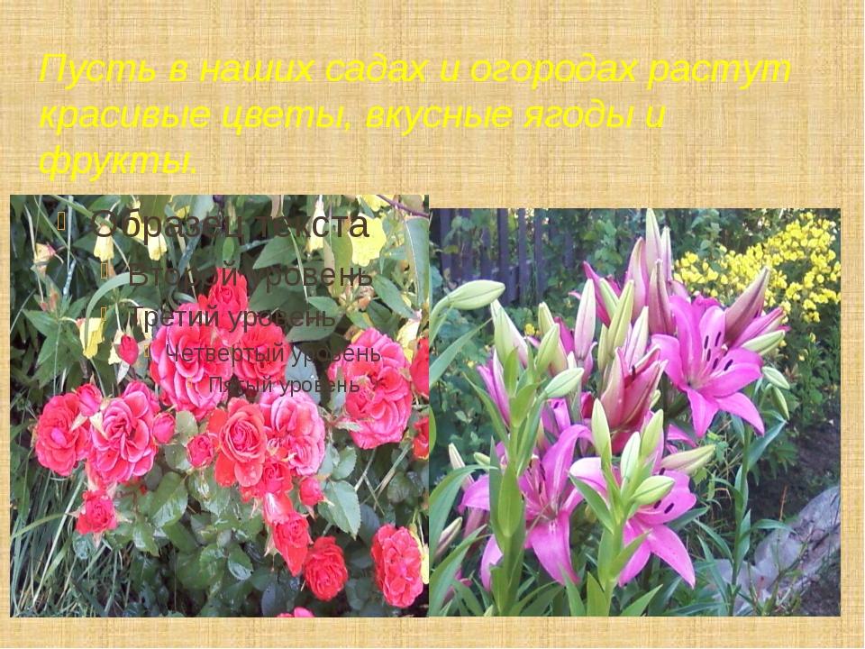 Пусть в наших садах и огородах растут красивые цветы, вкусные ягоды и фрукты.