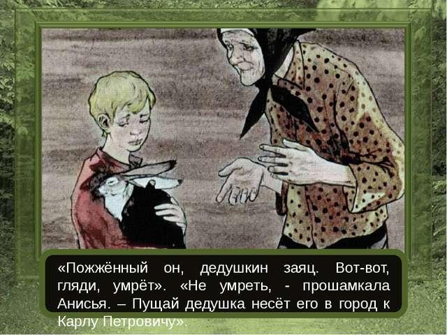 «Пожжённый он, дедушкин заяц. Вот-вот, гляди, умрёт». «Не умреть, - прошамка...