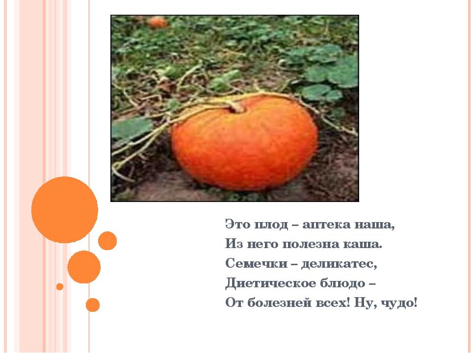Это плод – аптека наша, Из него полезна каша. Семечки – деликатес, Диетическ...