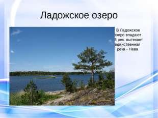 Ладожское озеро В Ладожское озеро впадают 35 рек, вытекает единственная река
