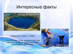 Интересные факты Чернильное озеро в Алжире. В нем не живут рыбы, не растут ра