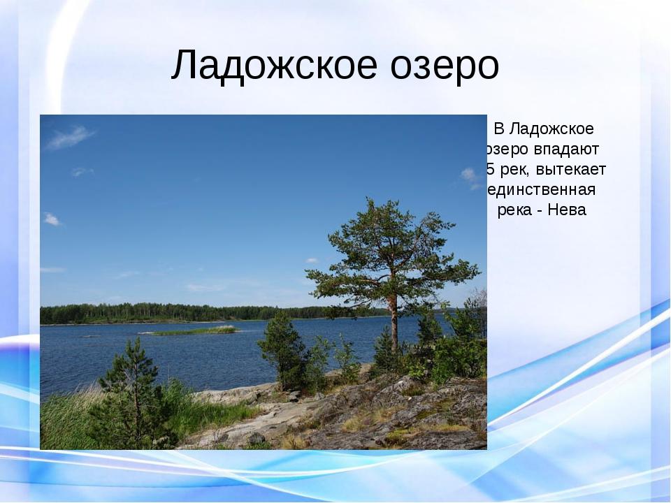 Ладожское озеро В Ладожское озеро впадают 35 рек, вытекает единственная река...