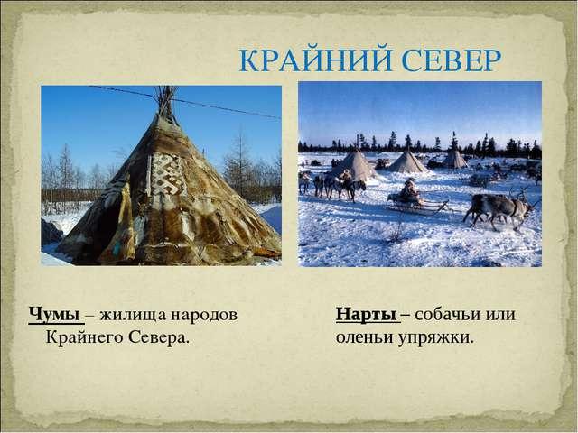 КРАЙНИЙ СЕВЕР Чумы – жилища народов Крайнего Севера. Нарты – собачьи или олен...
