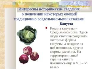 Интересны исторические сведения о появлении некоторых овощей традиционно возд