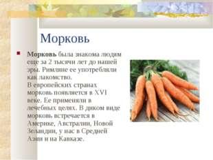 Морковь Морковь была знакома людям еще за 2 тысячи лет до нашей эры. Римляне