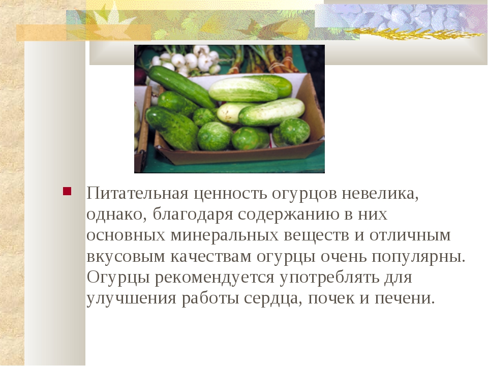 Питательная ценность огурцов невелика, однако, благодаря содержанию в них осн...