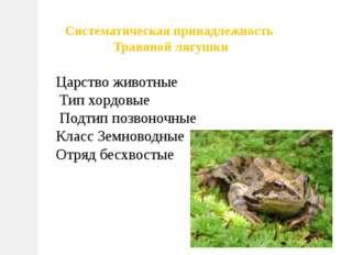 Систематическая принадлежность Травяной лягушки Царство животные Тип хордовые