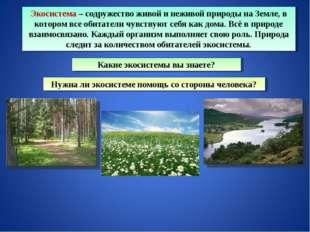 Экосистема – содружество живой и неживой природы на Земле, в котором все обит