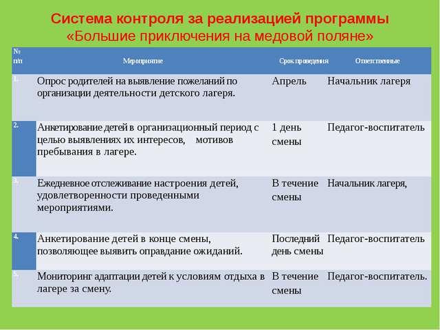 Оформительский сектор Система контроля за реализацией программы «Большие при...