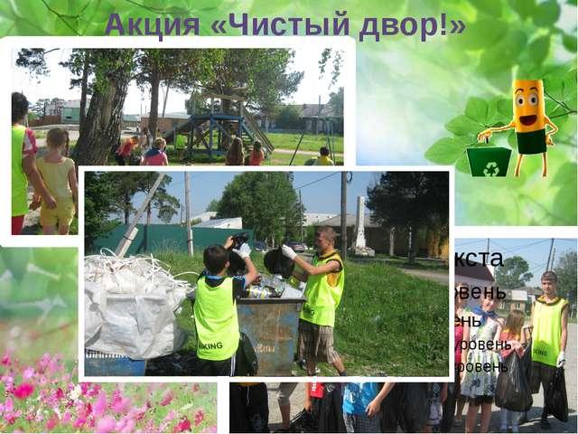 Акция «Чистый двор!»