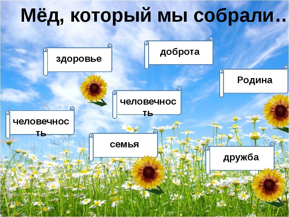 Мёд, который мы собрали… человечность здоровье человечность семья Родина дру...